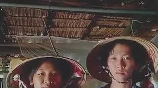 Phim ngắn xã hội đen Việt Nam : CÔ GÁI GIANG HỒ