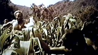Planet of the Apes 1968 TV trailer