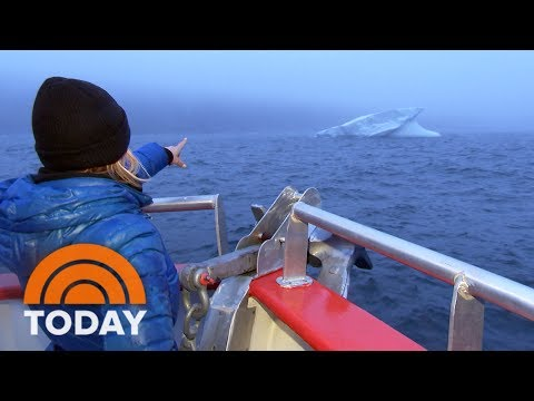 Dylan Dreyer Visits Newfoundland's Majestic Iceberg Alley | TODAY