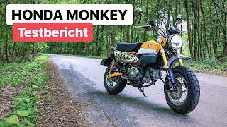 Honda Monkey 0-100 km/h / Spritverbrauch / Fazit