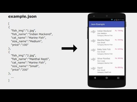 How to fetch JSON data using react js