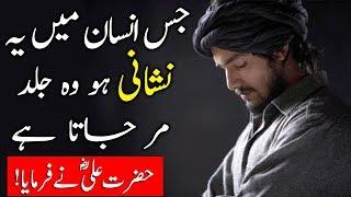 Jis Insan Mein Ye Nishani Ho Wo Jaldi Dunya Se Chala Jata Hai | Hazart Ali (R.A) Ka Farman