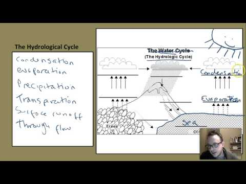 The Hydrological Cycle and Drainage Basin Systems