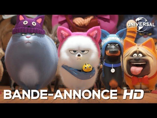 Comme Des Bêtes 2 / Bande-annonce VF [Au cinéma le 31 juillet 2019]