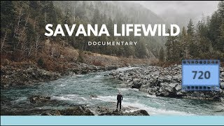 Savannah Life Wild Africa Documentary HD 2019