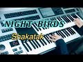 Night Birds / Shakatak ナイト・バーズ  シャカタク(耳コピ)★YAMAHA Electone ELS-02C