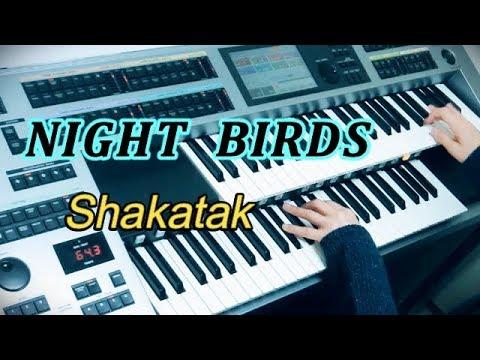 Night Birds /
