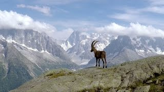 GoPro Awards: Wandering the French Alps
