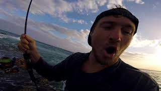 Extreme Saltwater Fishing with Bass Rod & Reel catching Tailor!