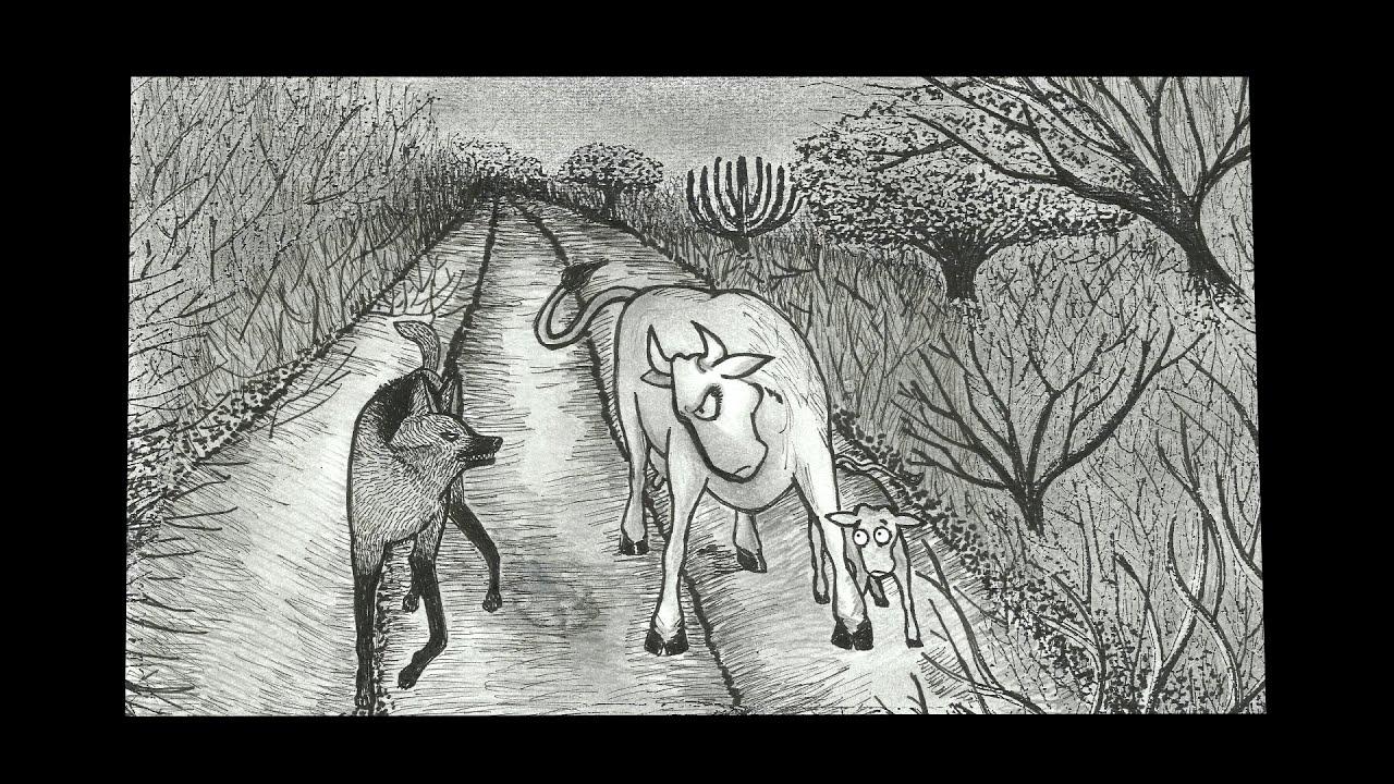 Animal Irracional> Gustavo Bezerra