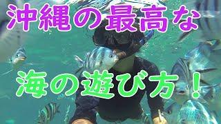 沖縄の有名なダイビングスポットと言ったら真栄田岬の青の洞窟!(今更?...