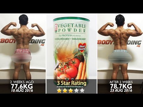 MLO Natural Vegetable Protein Powder