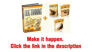 Have Dog Training, Just Like Training In Philadelphia / Las Vegas / San Diego [great Training! 2012]