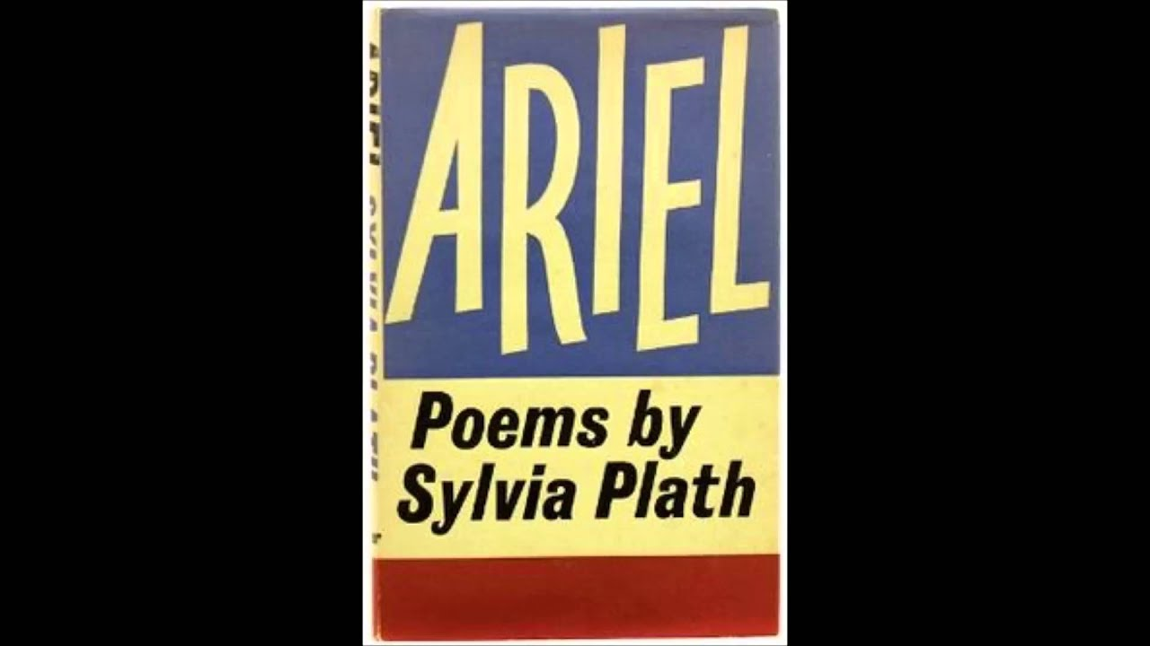 sylvia plath the applicant poem