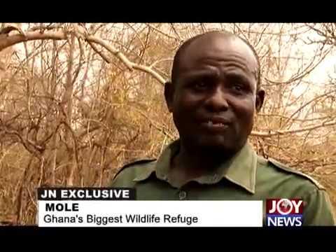 MOLE - Ghana's biggest Wildlife Refuge (COMPACT VERSION)