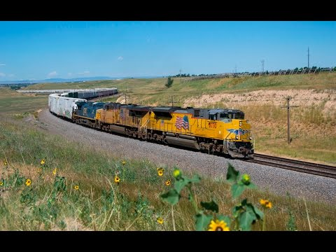 Amtrak, BNSF, and Union Pacific Trains in Denver, CO and Cheyenne, WY