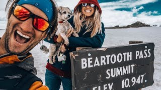 NOT WHAT WE EXPECTED! Beartooth Pass - TRIPPED RV S3 E5