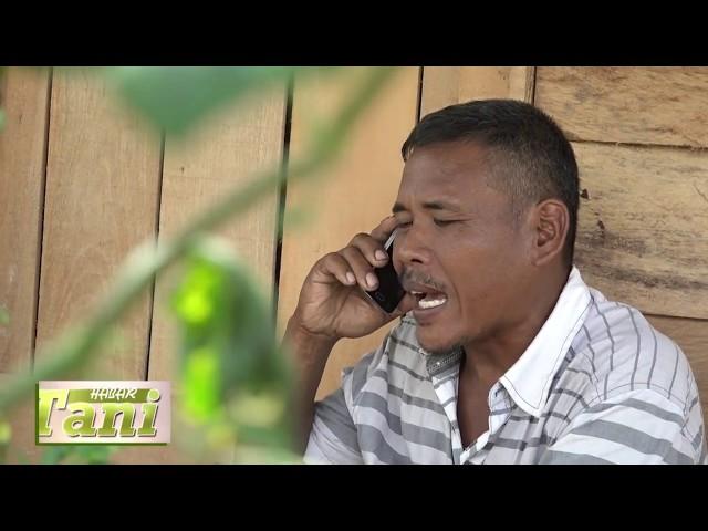 Habar Tani Episode 3 - Perbandingan Bahan Pembeku Karet  Segmen 2 #TV Tabalong