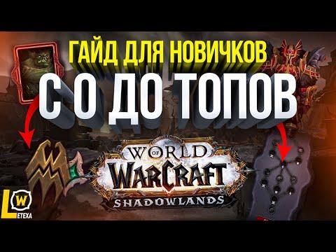ПОЛНЫЙ ГАЙД ДЛЯ НОВИЧКОВ WOW SHADOWLANDS КАК ИГРАТЬ В world of warcraf wow 9.0