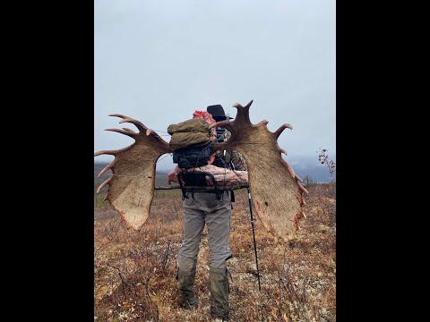"""ALASKA MOOSE HUNT with Billy Molls """"He's Never Lost"""" trailer, Modern Day Mountain Man Hunting"""