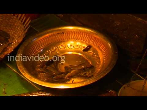 Battala Fish Market, Tripura