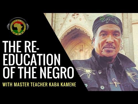 The ReEducation of the Negro With Professor Kaba Kamene of Hidden Colors