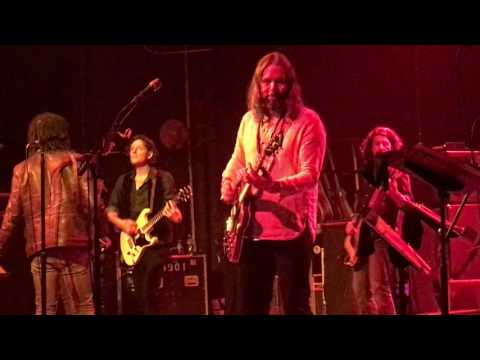 The Magpie Salute - Hotel Illness