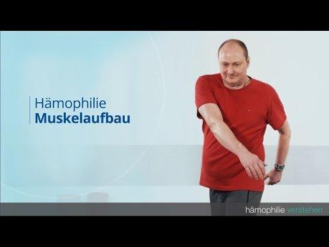 Hämophilie -  Muskelaufbau