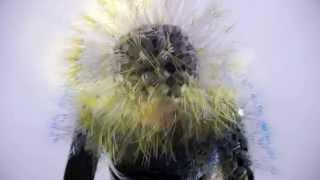 Björk - Quicksand (Reversed)