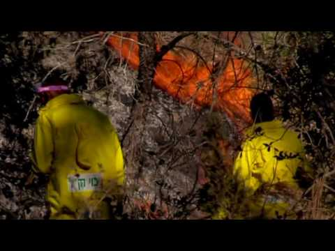 In the Heart of the Fires with KKL-JNF Foresters