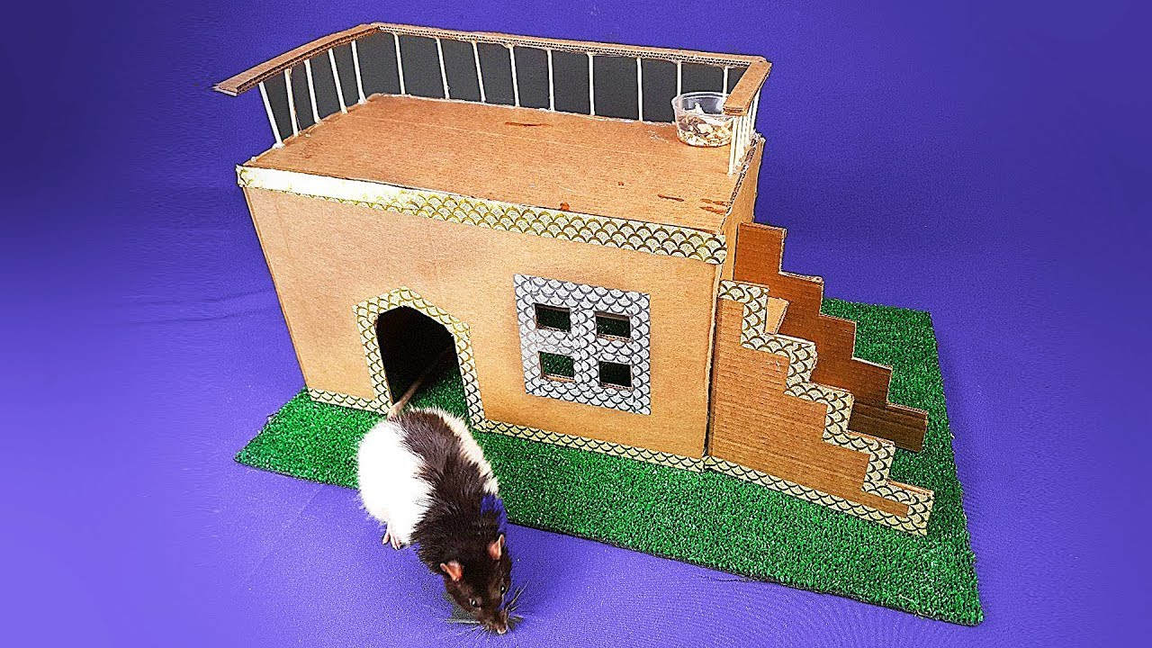 How to make Amazing Rat House from Cardboard