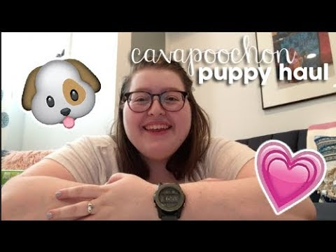 Cavapoochon Puppy Haul!