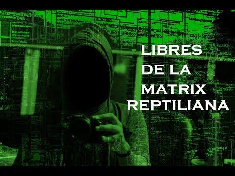 LIBEREMONOS DE LA MATRIX REPTILIANA