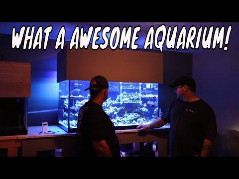 What A Marine Aquarium!