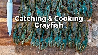 Crayfish: Catch