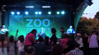 BABBA Live at Melbourne Zoo 2013