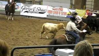 Best cattle-cutting horse Saturday night!