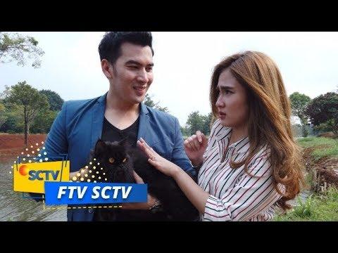 Cinta Ambyar Sobat Meong Ftv Sctv Youtube