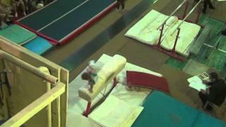 Семёнов Семён спортивная гимнастика 3 взрослый