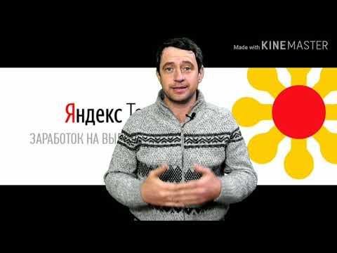 Сервис с оплатой за выполнение заданий, ЯНДЕКС ТОЛОКА