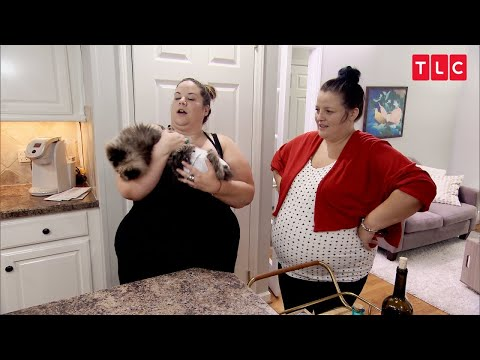 Why Is Whitney's Cat Wearing A Diaper? | My Big Fat Fabulous Life