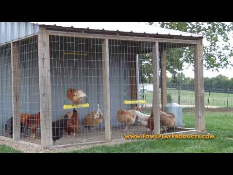 The Chicken Swing Fowl Play Products Chicks Dig It