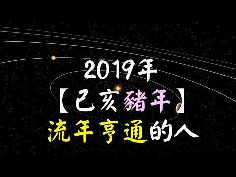 欣欣夫紫微斗數 2019年 【己亥豬年】 流年亨通的人