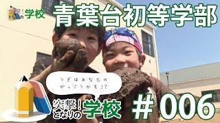 突撃!となりの学校 #006|青葉台初等学部