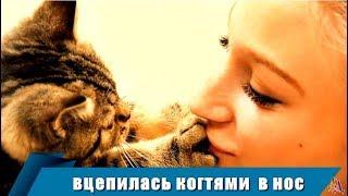 Вдруг КОШКА вцепилась когтями женщине в нос - та от боли громко зашипела, кошка удивилась
