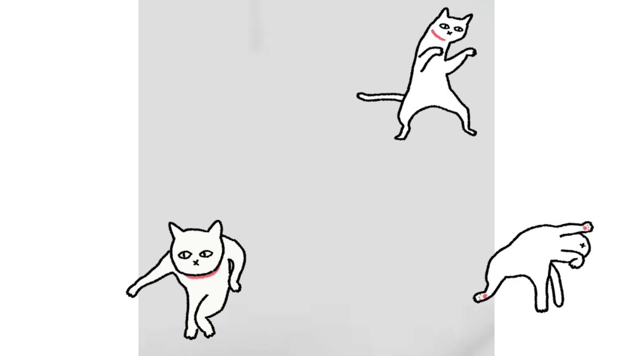 kucing joget youtube youtube
