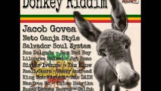 Mighty Man - Salvador Soul Zystem DONKEY RIDDIM El Cuartito de a Jah Rec. & Tnt Music