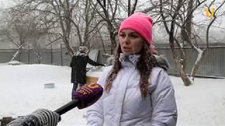 Глазами животных #313. Группа помощи бездомным животным «Добрые руки»  их подопечные
