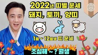 2022 돼지,토끼,양띠 띠별 1월~12월생 (福) 운세~ 조심해~?월생
