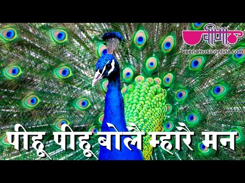New Rajasthani Hot Songs 2017 | Piya Pihu Pihu Bole | Rajasthani Sawan Songs